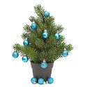 Christmas Potted Plant