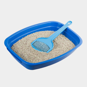 Best Way To Dispose Of Clay Cat Litter