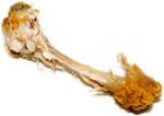 Chicken Bone