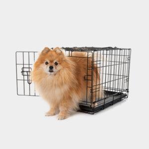 600x600-pet-crate